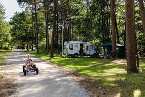 RCN Vakantiepark het Grote Bos - Photo 11