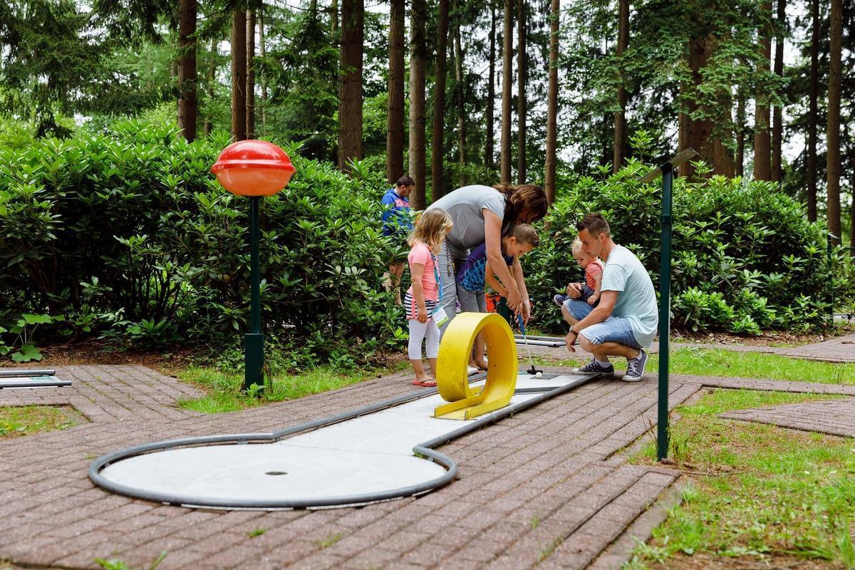 RCN Vakantiepark de Roggeberg - Photo 40