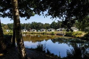 RCN Vakantiepark de Flaasbloem - Photo 7