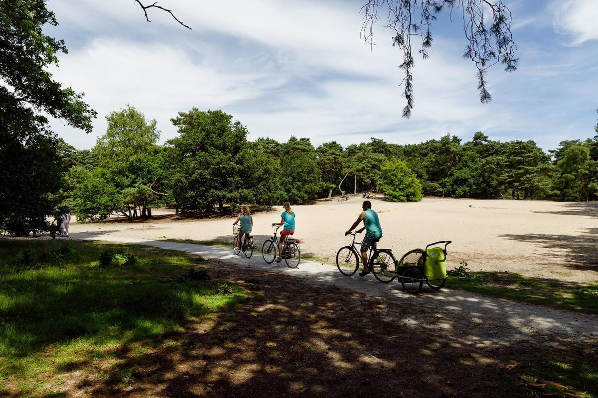 RCN Vakantiepark het Grote Bos - Photo 27
