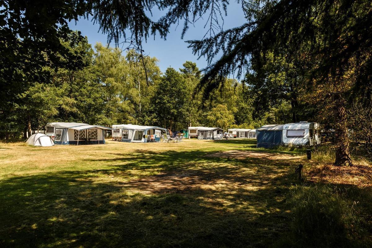 RCN Vakantiepark de Flaasbloem - Photo 28