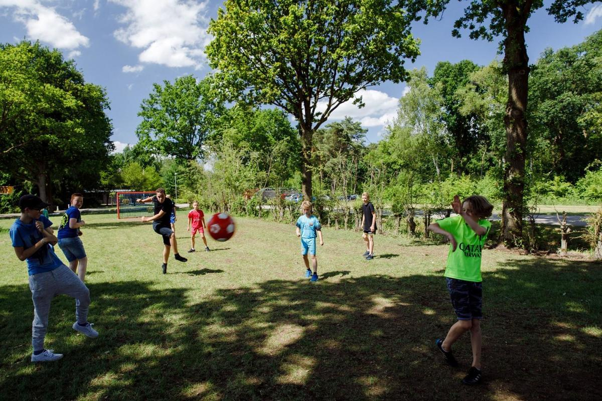 RCN Vakantiepark de Flaasbloem - Photo 39