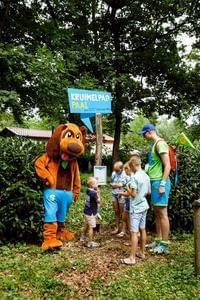RCN Vakantiepark de Flaasbloem - Photo 43