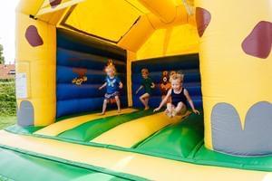 RCN Vakantiepark Toppershoedje - Photo 30