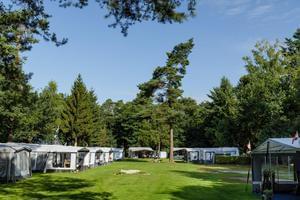 RCN Vakantiepark de Jagerstee - Photo 8