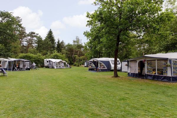 RCN Vakantiepark de Noordster - Photo 2