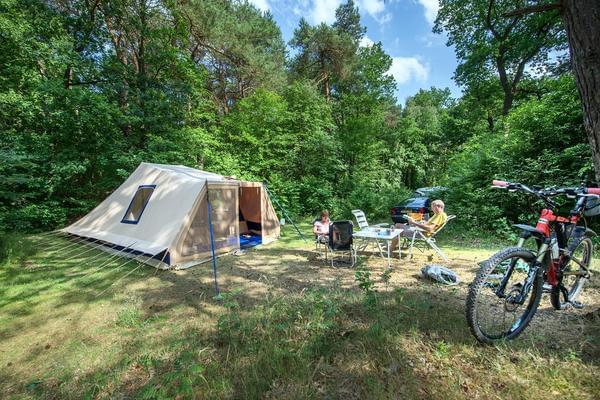 RCN Vakantiepark de Noordster - Photo 10