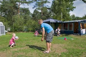 RCN Vakantiepark de Noordster - Photo 21