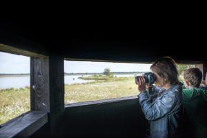 RCN Vakantiepark de Noordster - Photo 26