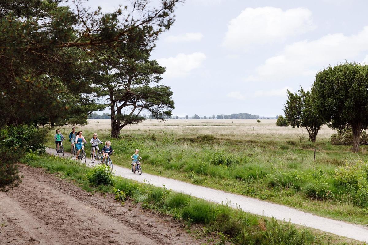 RCN Vakantiepark de Noordster - Photo 27