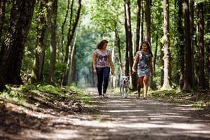 RCN Vakantiepark de Jagerstee - Photo 23