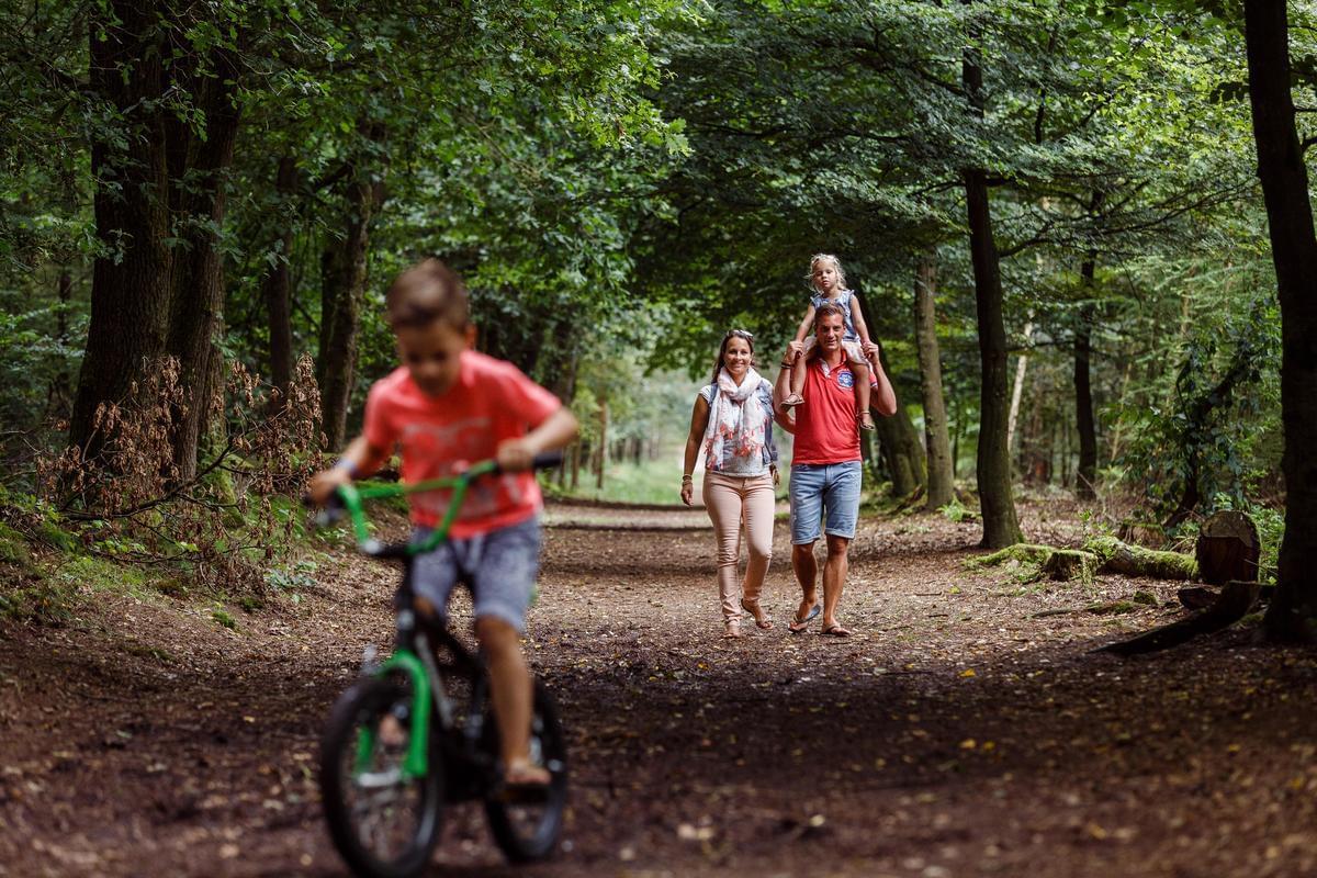 RCN Vakantiepark de Jagerstee - Photo 24