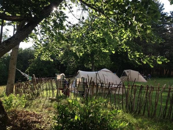 Le Grand Bois - Photo 4