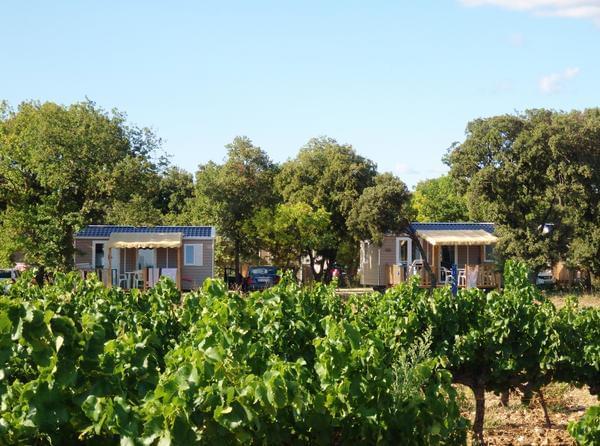 Camping Le Garrigon - Photo 2