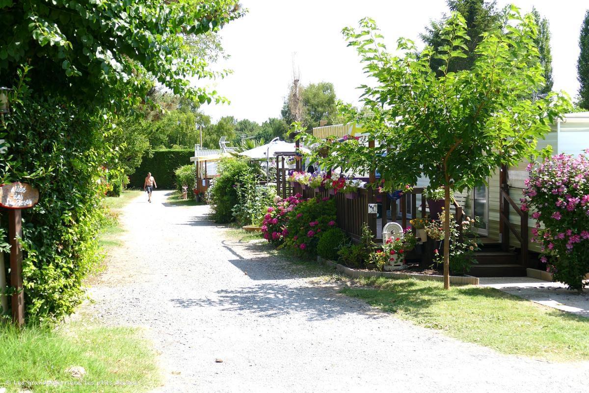 Camping Paradis Les Pins Royan - Photo 5