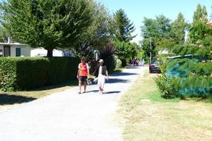Camping Paradis Les Pins Royan - Photo 8