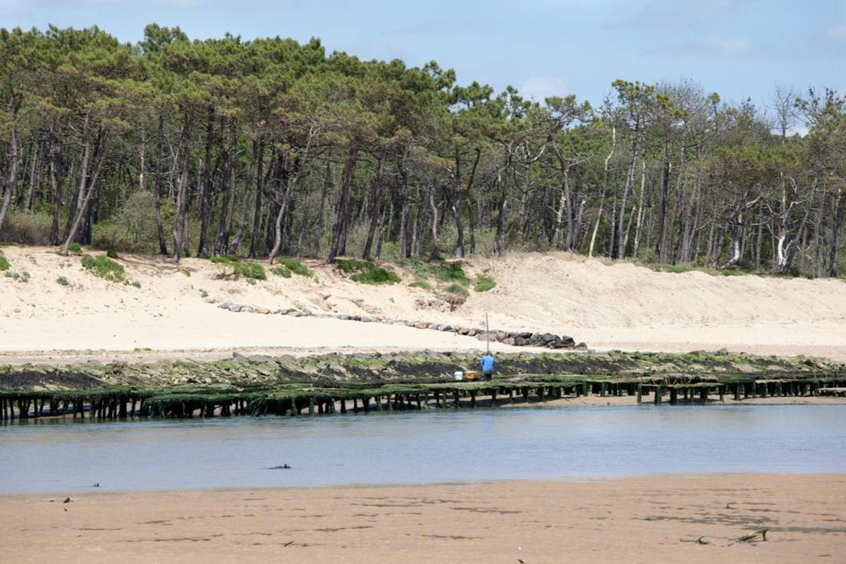 Sea Green - Camping Le Paradis - Photo 527