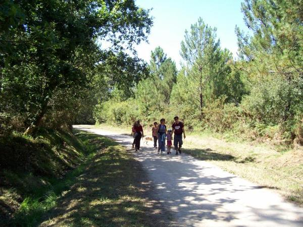 Camping Le Moulin des Oies - Photo 5