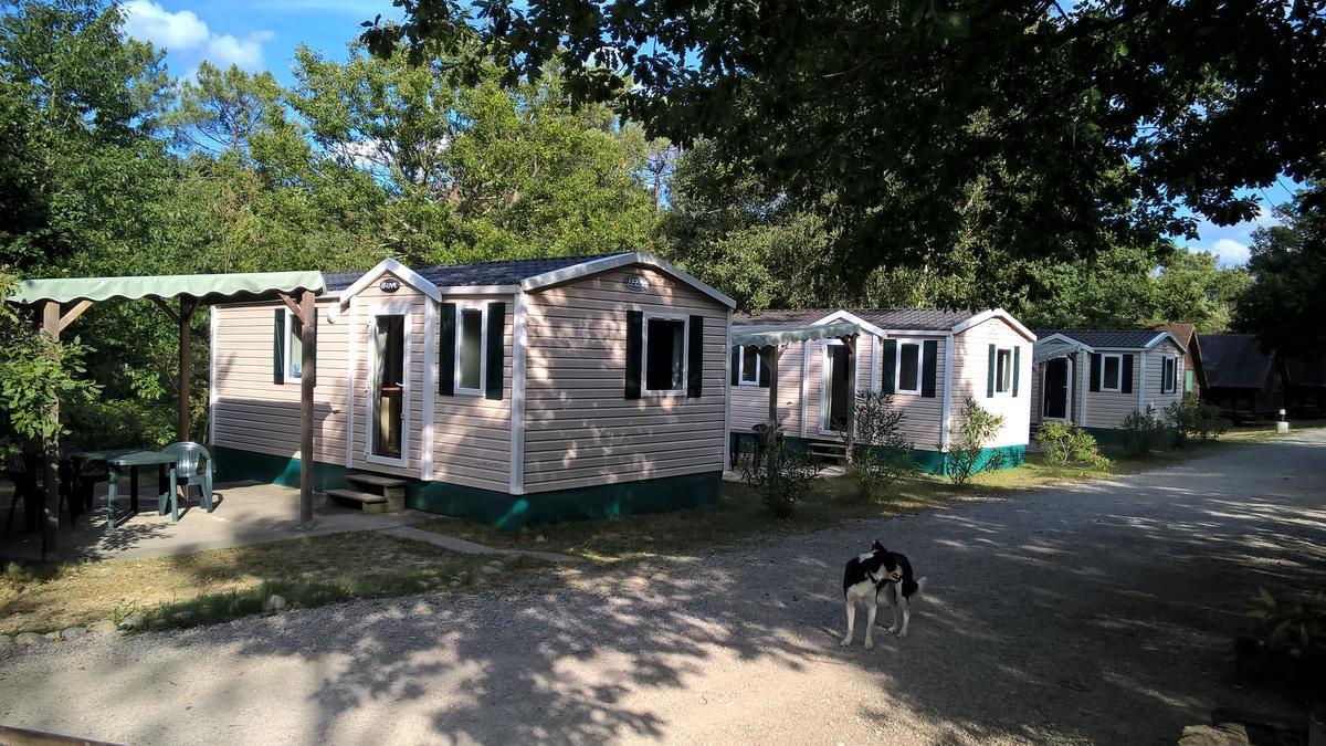 Camping La Régate - Photo 17