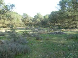 Camping La Sierrecilla - Photo 18