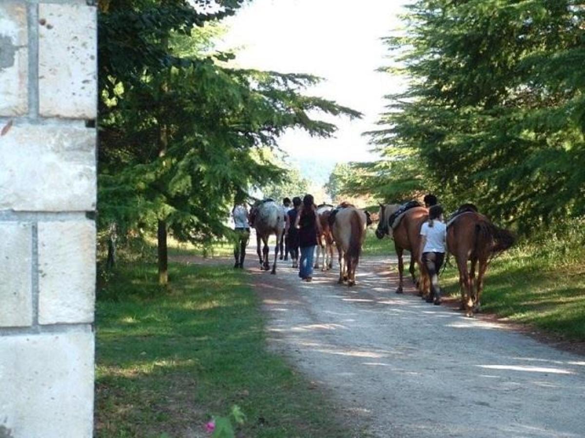 Camping Puynadal Brantôme - Photo 35