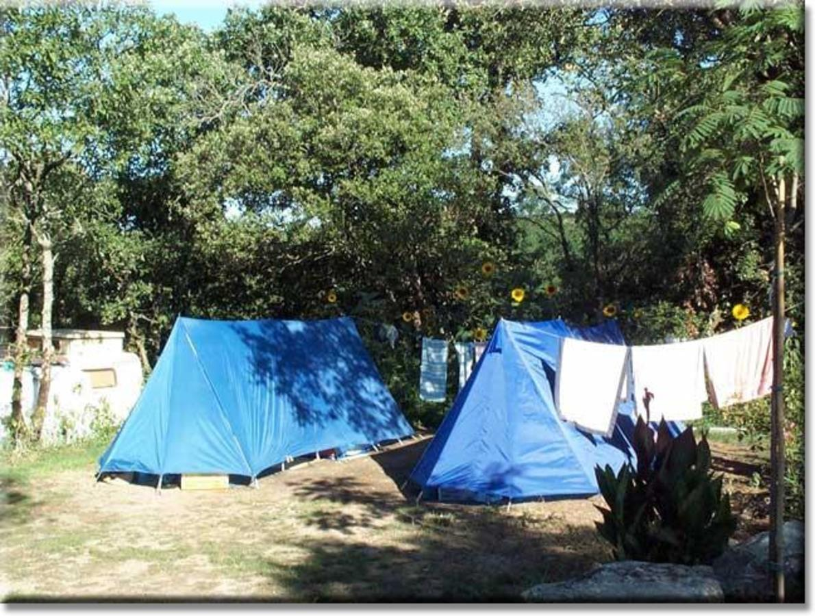 Camping LE MARTINET ROUGE - Photo 2