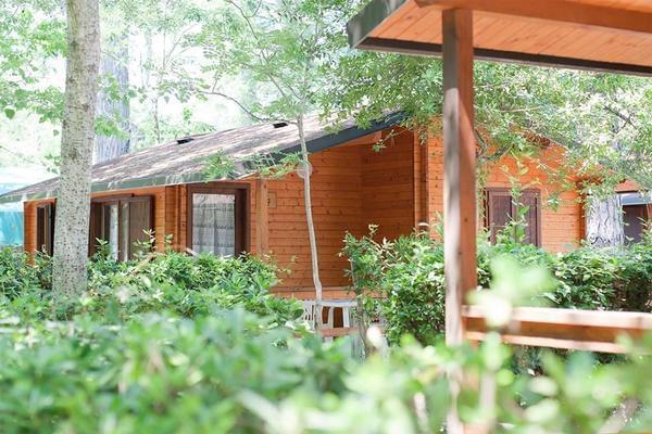 Campeggio Bosco Verde - Photo 2