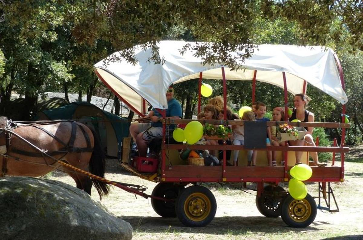 Camping LE MARTINET ROUGE - Photo 47