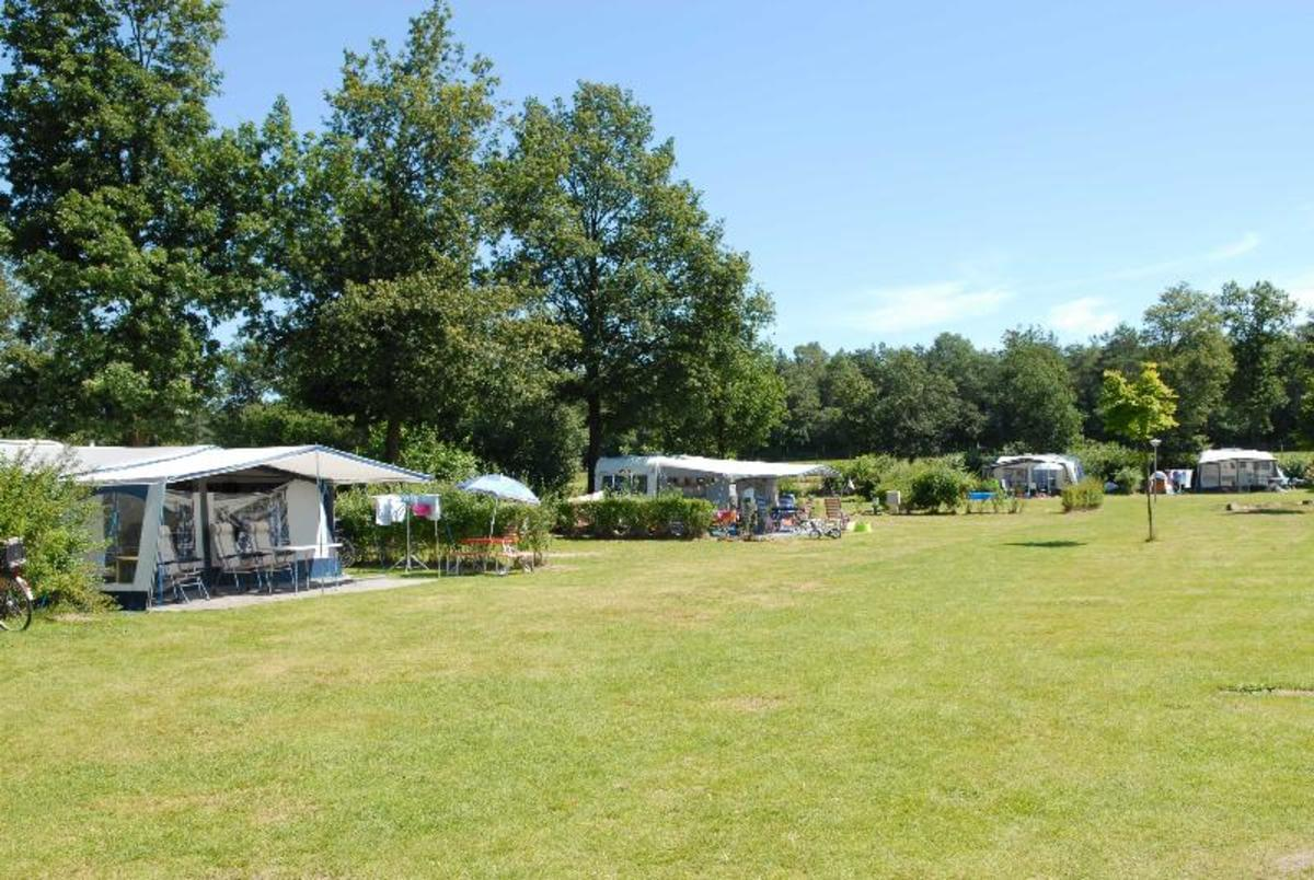 Veluwecamping 't Schinkel - Photo 2
