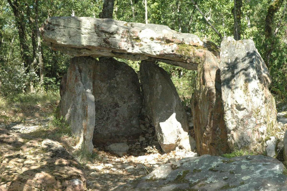 Domaine de Claire Rive - Terres de France - Photo 1303