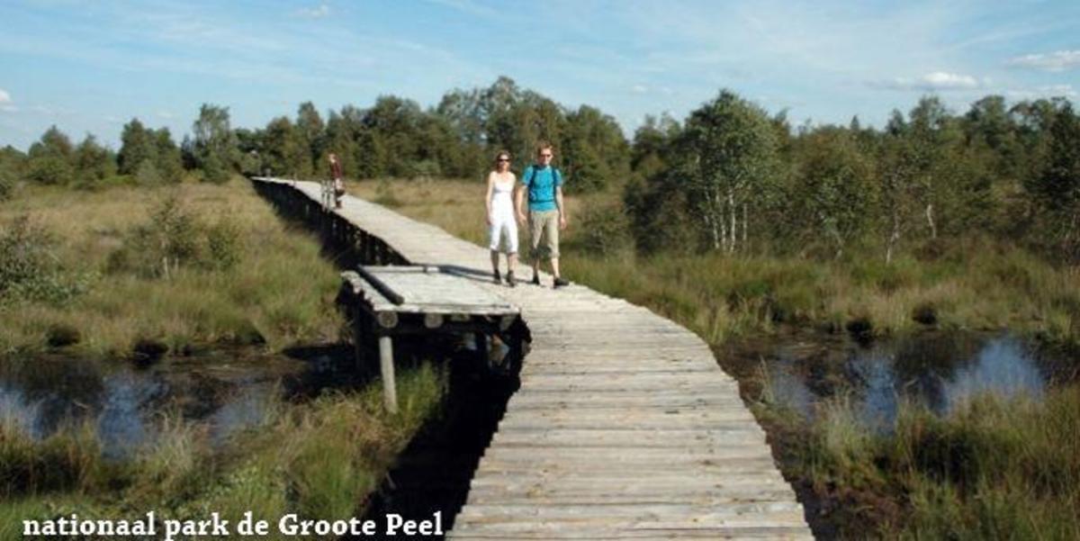 Recreatiepark Beringerzand - Photo 40