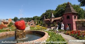 Recreatiepark Beringerzand - Photo 44