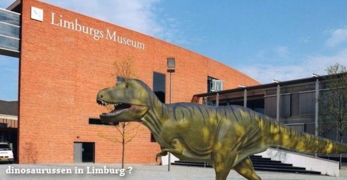 Recreatiepark Beringerzand - Photo 45