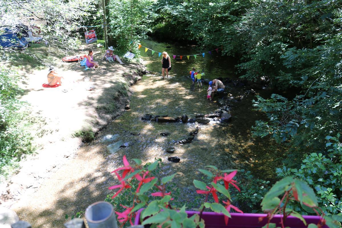 Sites et Paysages Moulin de Chaules - Photo 13