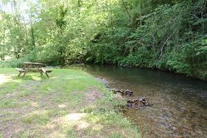 Sites et Paysages Moulin de Chaules - Photo 14