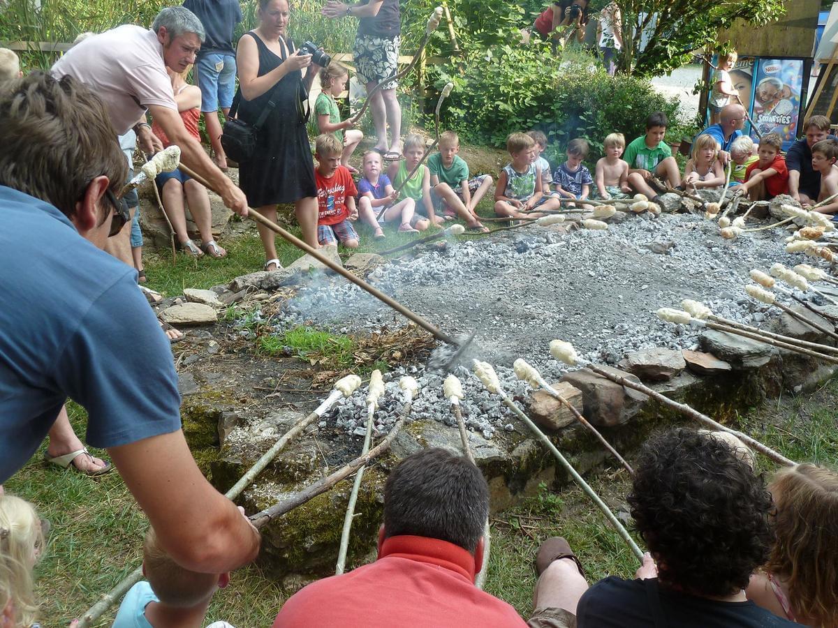 Sites et Paysages Moulin de Chaules - Photo 25