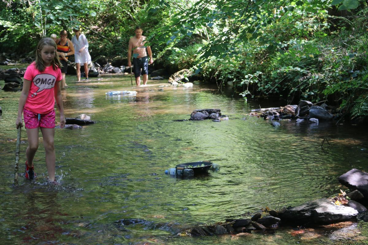 Sites et Paysages Moulin de Chaules - Photo 31