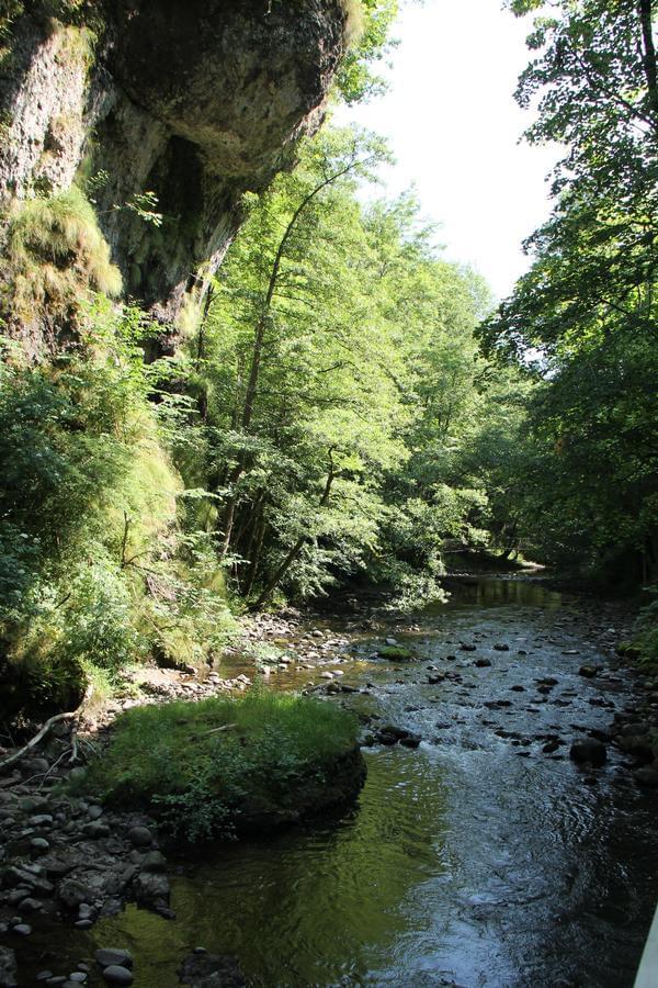 Sites et Paysages Moulin de Chaules - Photo 40