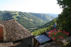 Sites et Paysages Moulin de Chaules - Photo 46