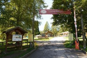 Fiemme Village - Photo 3