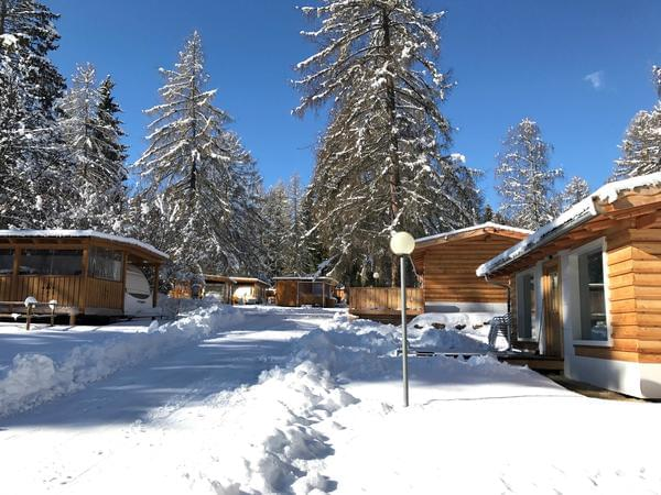 Fiemme Village - Photo 6