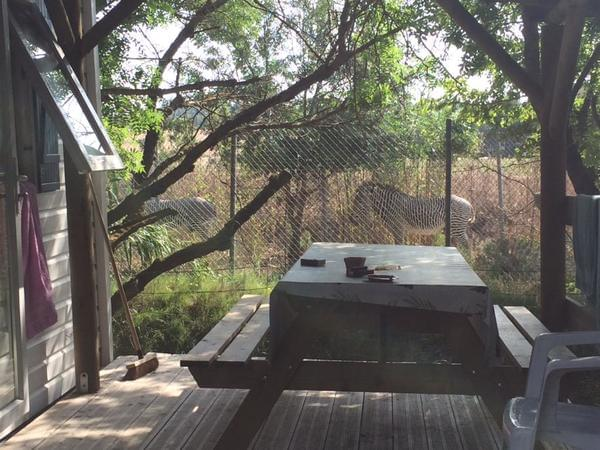 Camping La Grange Neuve - Photo 4