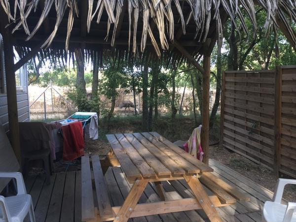 Camping La Grange Neuve - Photo 3
