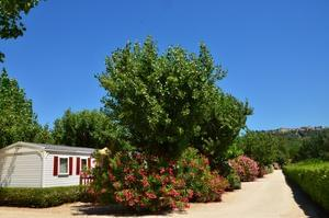 Camping Paradis Les Amarines - Photo 2