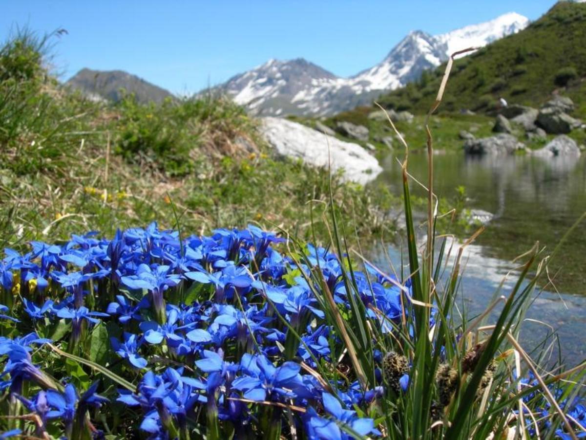 Camping Qualité l'Eden de la Vanoise - Photo 67