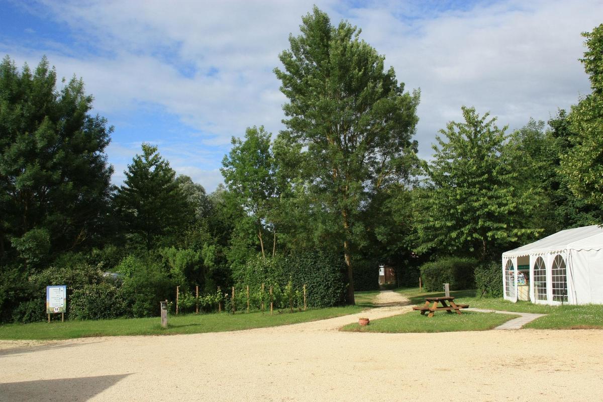 Camping La Vallée des Vignes - Photo 4