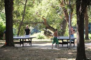 Camping Bellerive - Photo 12