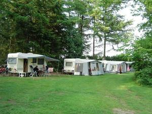 Camping 't Meulenbrugge - Photo 12