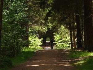 Camping Alkenhaer - Photo 26