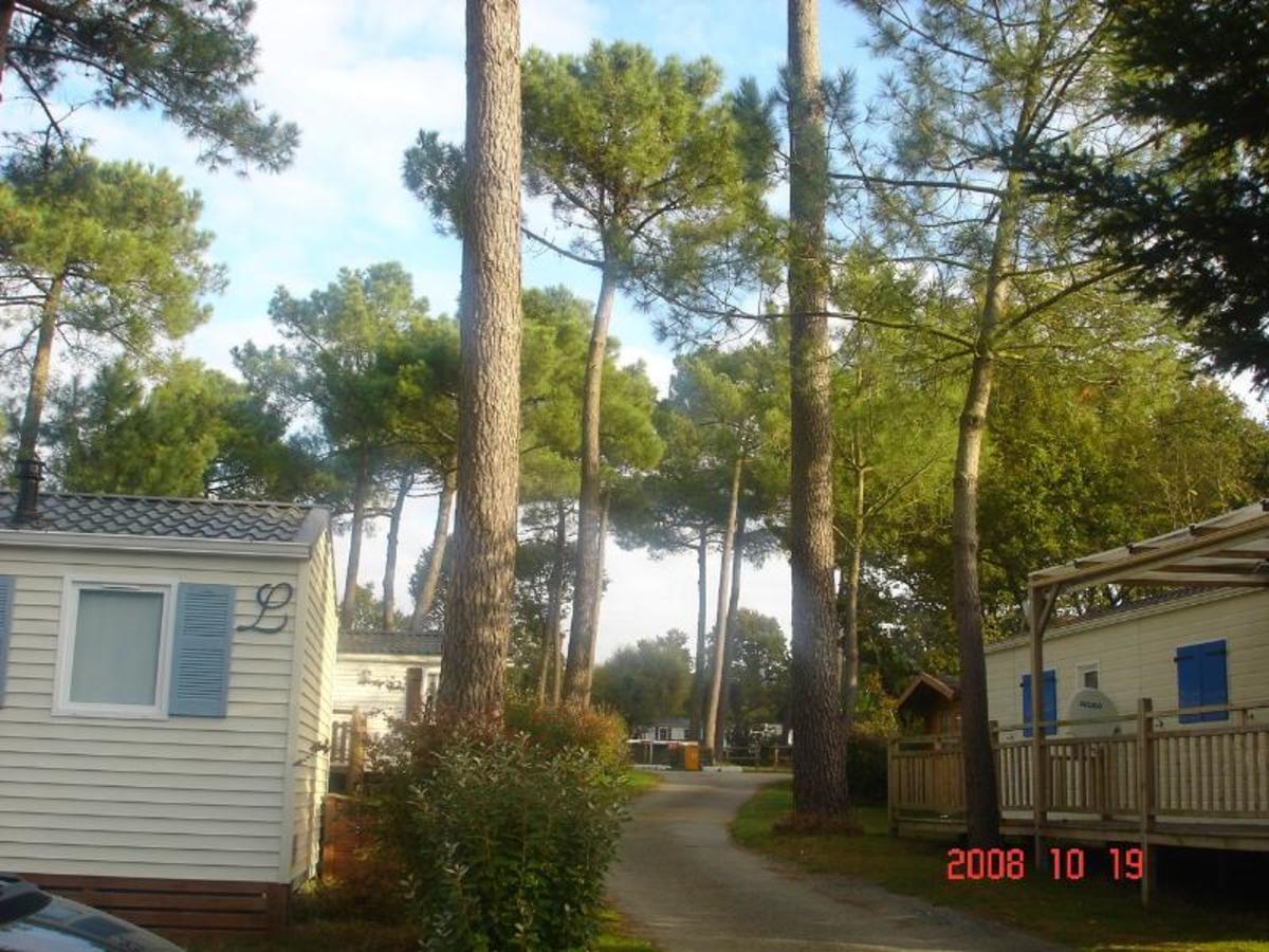 Camping de KERGO - Photo 3